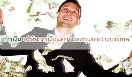 การเงิน บริษัทการเงินและการลงทุนระหว่างประเทศ